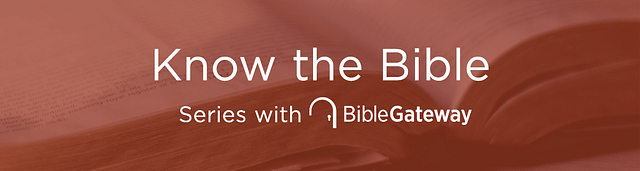 Looking for a Concise, Fundamental Grasp of Scripture?