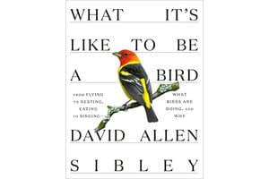 What are birds doing? David Allen Sibley knows.
