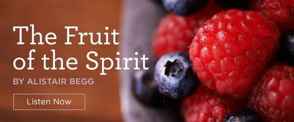 The Root of Our Holiness: Introducing the Fruit of the Spirit (Part 1 of 9)